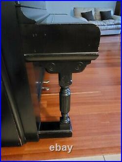 1891 Steinway Model E Professional