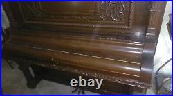19th Century Schubert Mandolin Piano 1892