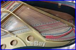 Ebony Satin 1985 YOUNG CHANG 6' 1 GRAND PLAYER PIANO