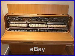 Euterpe 110 upright piano