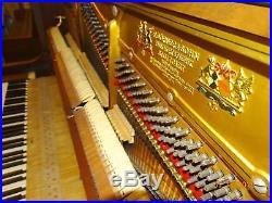 F. Dorner & Sohn Upright Piano, German Engineered, Gorgeous Art Case