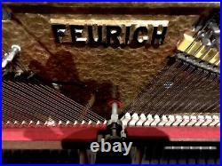 Feurich Studio Upright Piano 48 Polished Ebony