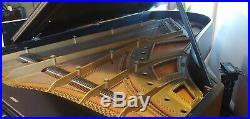 Hallet Davis piano Concert Grand