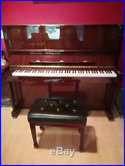 Petrof Professional Upright Piano 49